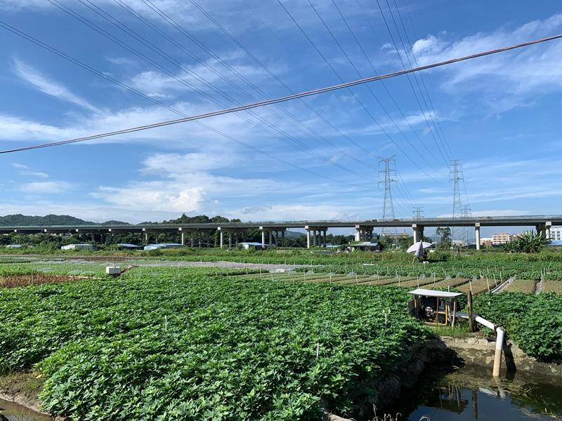 蔬菜基地.jpg